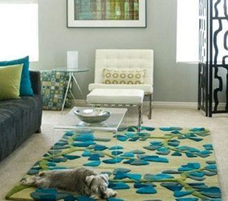 Carpet Cleaner Tucson   Reliabe. Affordable. Insured.   Mr. Carpet Cleaner